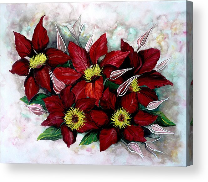 Flower Painting Floral Painting Red Painting Botanical Painting Clematis Painting Greeting Card Painting Flower Vine Painting Acrylic Print featuring the painting Clematis Niobe by Karin Dawn Kelshall- Best