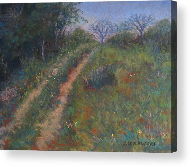 Landscape Acrylic Print featuring the painting Country Road by Cindy Morawski