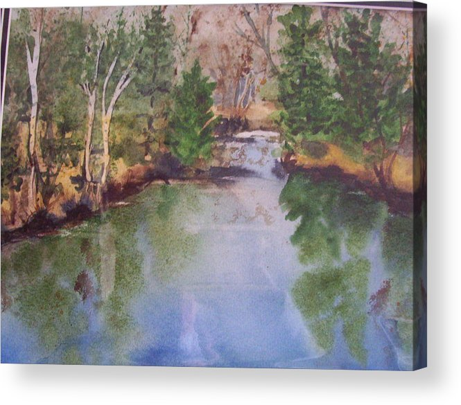 Landscape Acrylic Print featuring the painting Dan S Pond by Audrey Bunchkowski