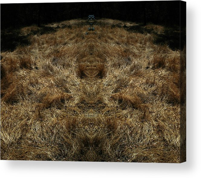 Grass Acrylic Print featuring the photograph Farview 2 by A paul Cartier