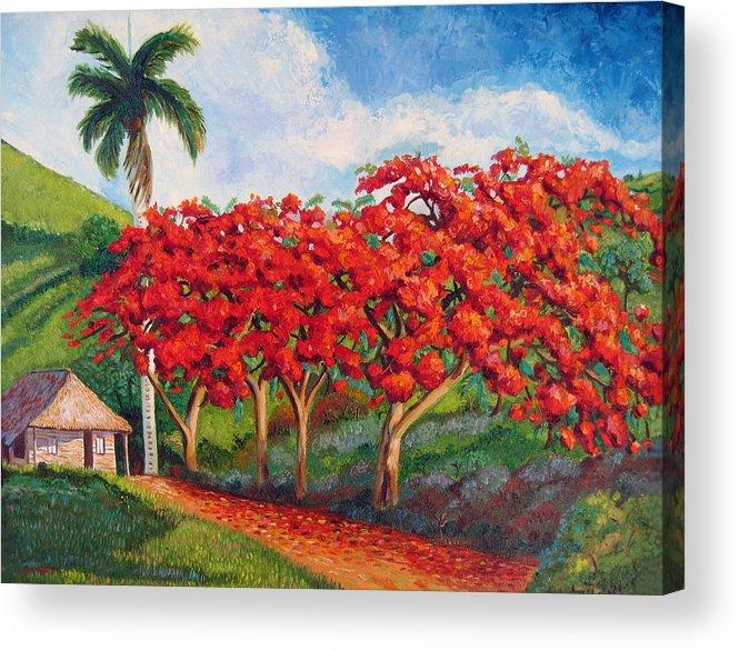 Cuban Art Acrylic Print featuring the painting Flamboyans by Jose Manuel Abraham