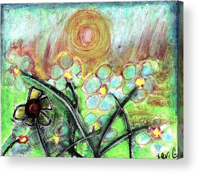 Daisy Acrylic Print featuring the pastel Individuality by Levi Glassrock