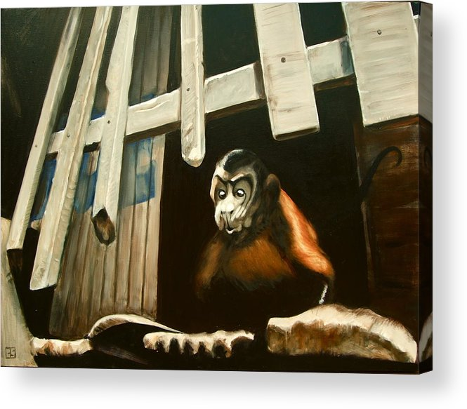 Monkey Acrylic Print featuring the painting Iquitos Monkey by Chris Slaymaker