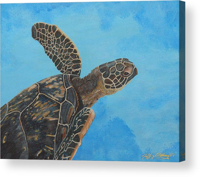 Hawaiian Sea Turtle Acrylic Print featuring the painting Lil Honu by Jeffrey Oldham