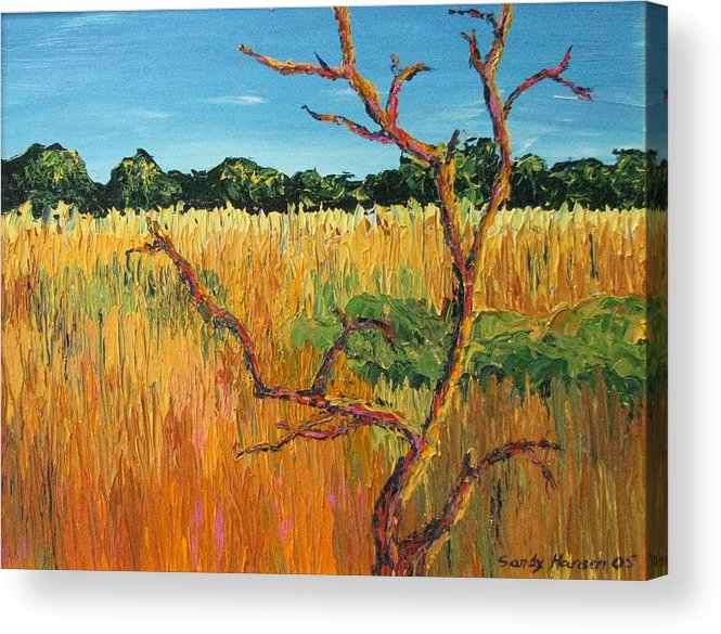 India Acrylic Print featuring the painting Looking For Tigers by Art Nomad Sandra Hansen