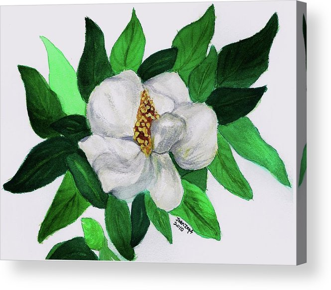 Magnolia Acrylic Print featuring the painting Magnolia I by Joan Zepf