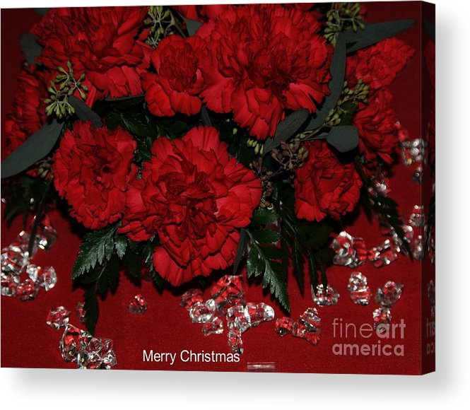 Red Acrylic Print featuring the photograph Merry Christmas by Kathleen Struckle