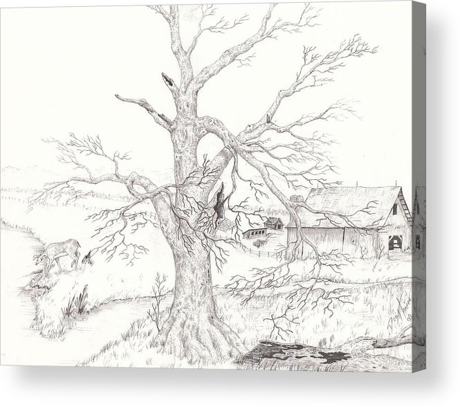 Realistic Drawing Acrylic Print featuring the drawing Midwest Usa by Dan Theisen