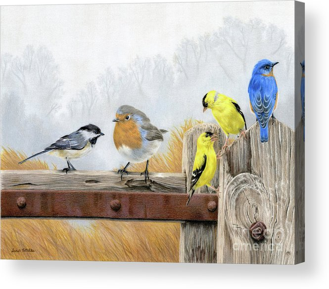 Birds Acrylic Print featuring the painting Misty Morning Meadow by Sarah Batalka