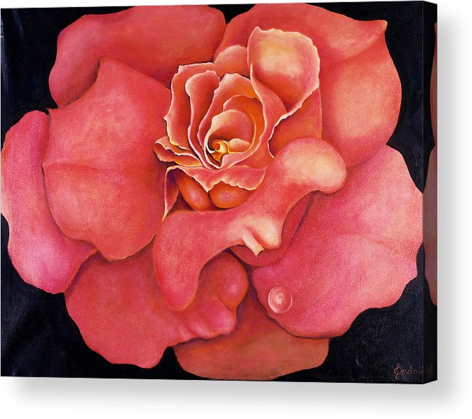 Rose.bloom Acrylic Print featuring the painting Pink Blush by Jordana Sands