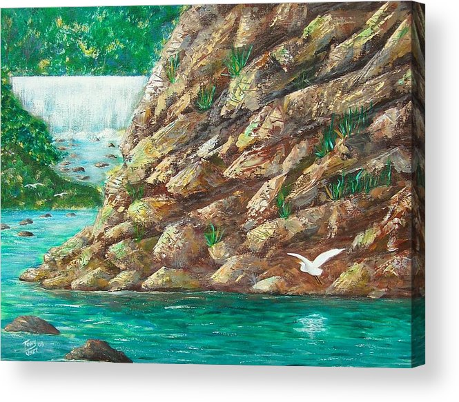 River Acrylic Print featuring the painting Rio La Plata by Tony Rodriguez