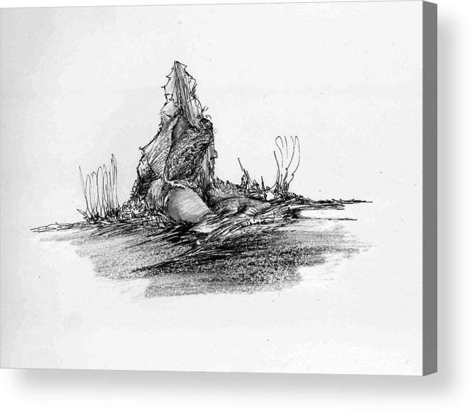 Rock Acrylic Print featuring the drawing Rocscape 3 by Padamvir Singh