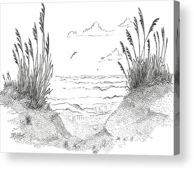 Sea Oats Acrylic Print featuring the drawing Sea Oats by Barney Hedrick