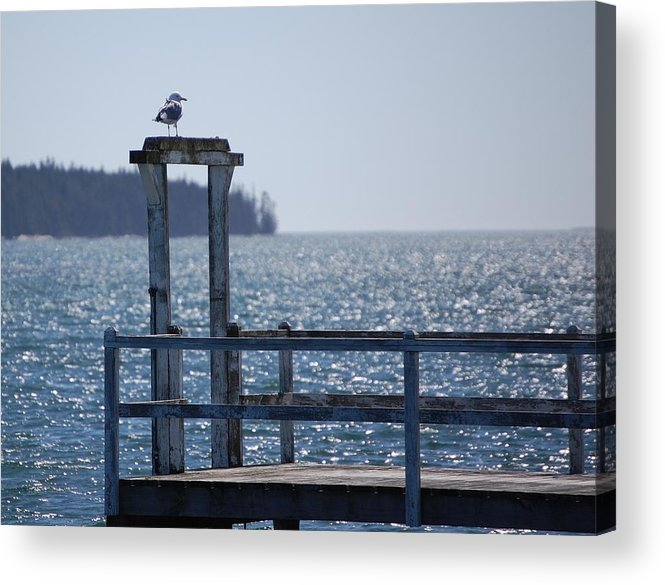 Seascape Acrylic Print featuring the photograph Sentinel by Dale R Preston