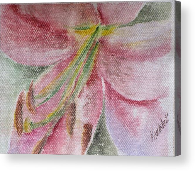 Floral Acrylic Print featuring the painting Spring Lily by Kathy Mitchell