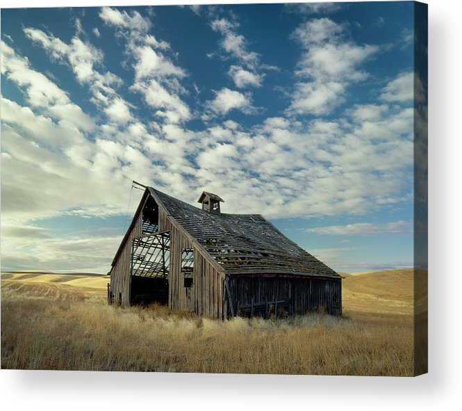 Palouse Acrylic Print featuring the photograph Steadfast On Little Alkali Flat by Jerry McCollum