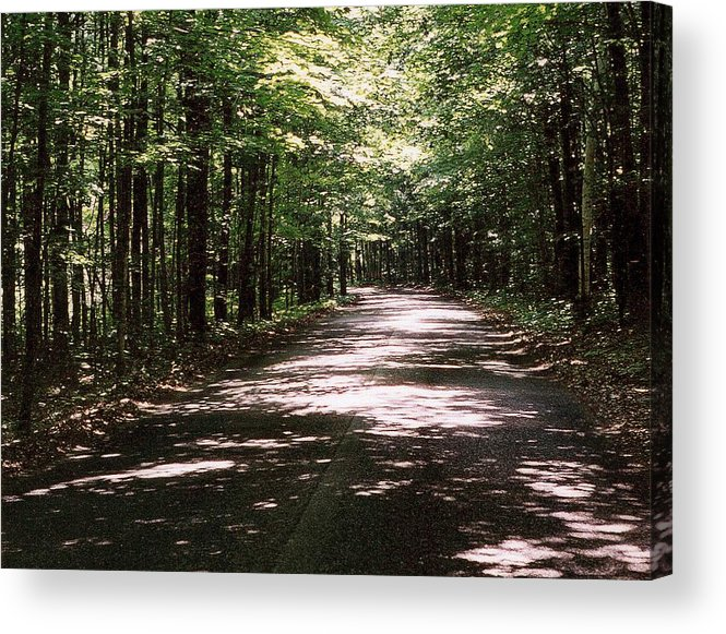 Landscape Acrylic Print featuring the photograph Sun And Shadow Road In Summer C3pdl by Lyle Crump