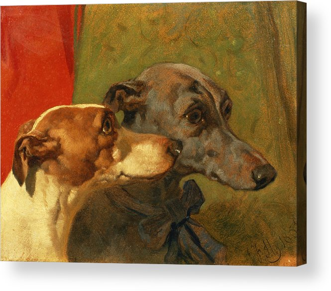 Greyhound; Dog; Ribbon; Bow; Dogs; Charlie; Pet; Racing; Levrier; Levriers Acrylic Print featuring the painting The Greyhounds Charley And Jimmy In An Interior by John Frederick Herring Snr