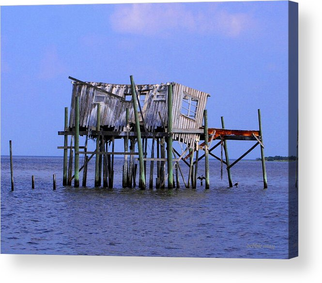 Cedar Key Acrylic Print featuring the photograph The Honey Moon Suite 4 - Debbie May - Phtosbydm by Debbie May