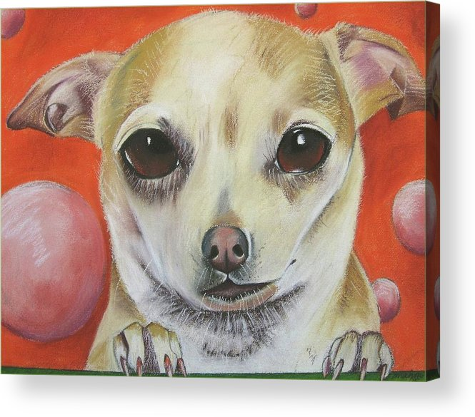 Dog Painting Acrylic Print featuring the pastel Yo Quiero by Michelle Hayden-Marsan