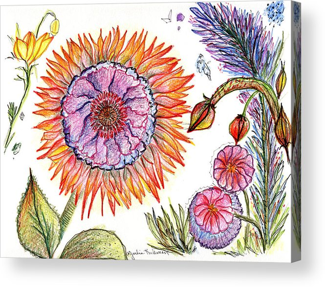 Flowers Nature Botany Drawing Julie Richman Flora Pencil Acrylic Print featuring the painting Botanical Flower-50 by Julie Richman