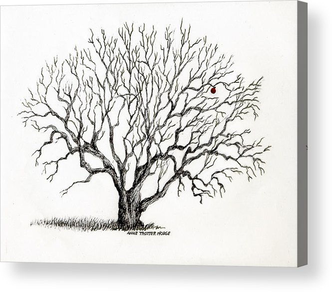 Landscape Acrylic Print featuring the print The Last Apple by Anne Trotter Hodge