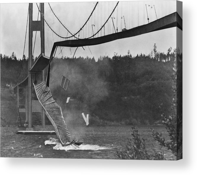 Bridge Acrylic Print featuring the photograph Tacoma Narrows Bridge Collapse by Library Of Congress/science Photo Library