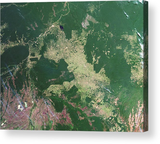 Forest Acrylic Print featuring the photograph Deforestation In The Amazon by Nasa Earth Observatory