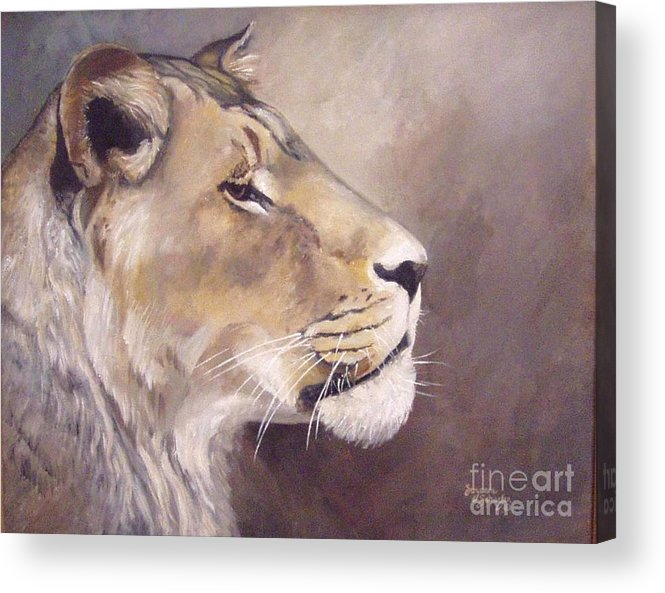 African Lioness Acrylic Print featuring the painting African Lioness On Alert by Suzanne Schaefer