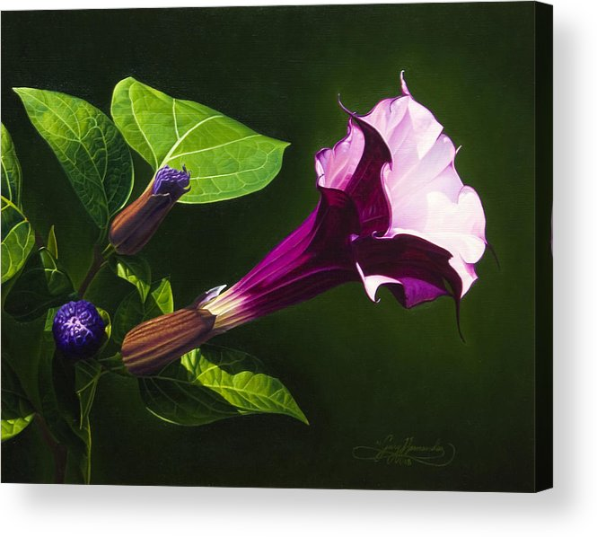 Floral Acrylic Print featuring the painting Anastacias Datura by Gary Hernandez