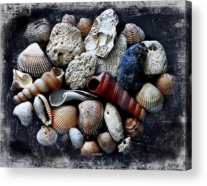 Landscape Acrylic Print featuring the photograph Beach Treasures by Virginia Folkman