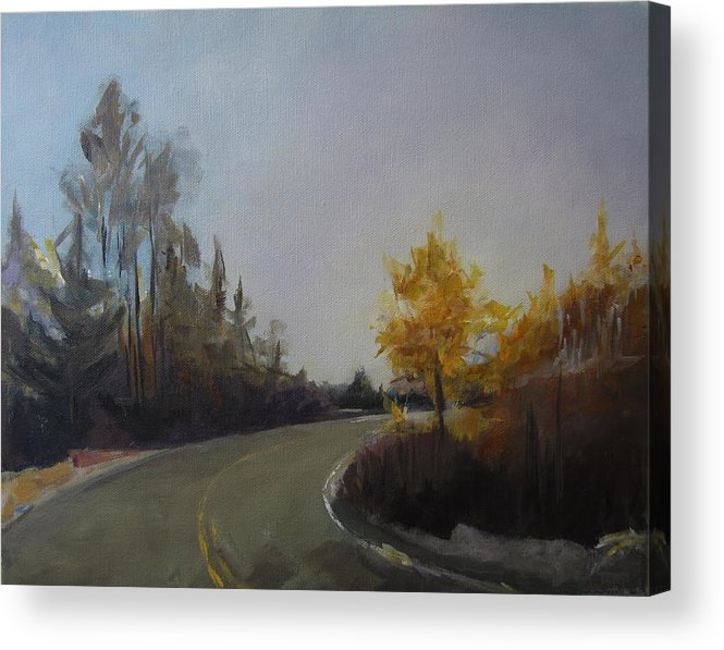 Landscape Acrylic Print featuring the painting Bogus Basin Road by Terri Messinger