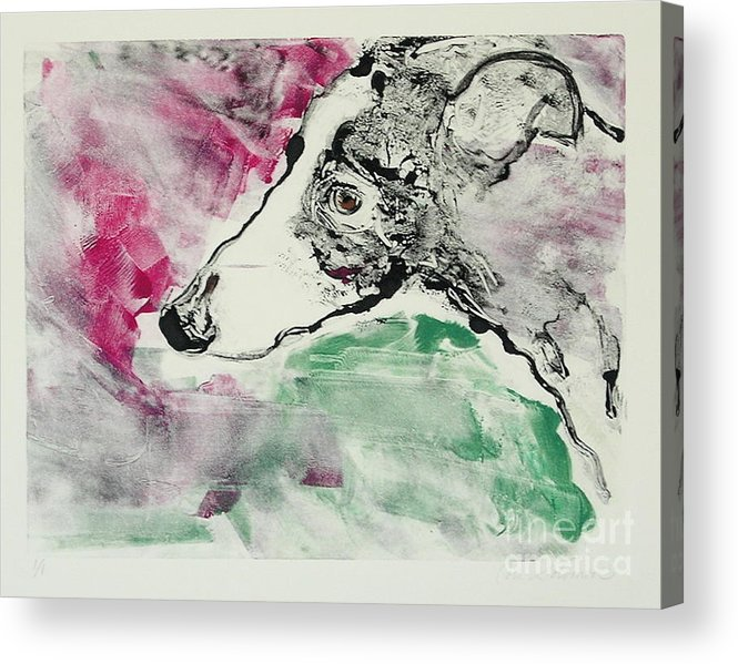 Greyhound Acrylic Print featuring the painting Cyrus by Cori Solomon