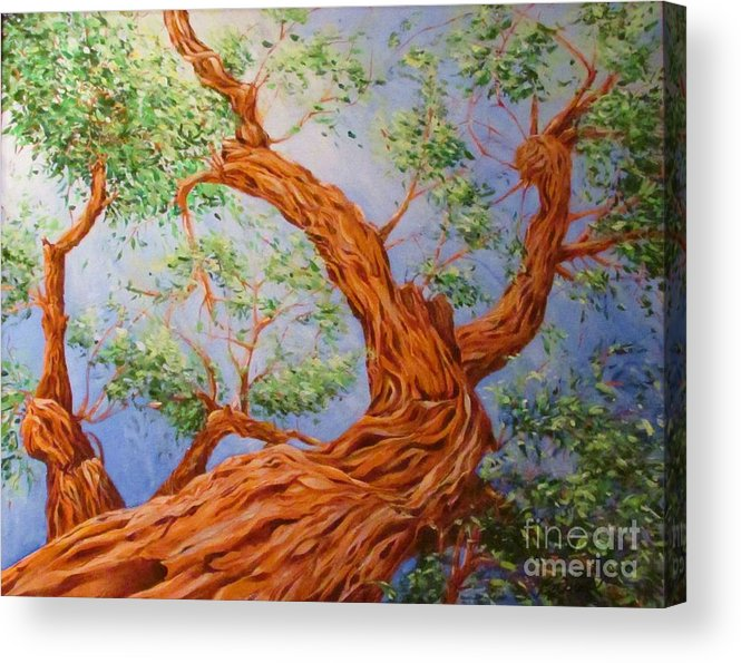 Tree Acrylic Print featuring the painting Desert Tree by Beth Fischer