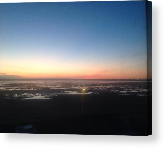 Delight Acrylic Print featuring the painting Evening Delight by Judith Desrosiers