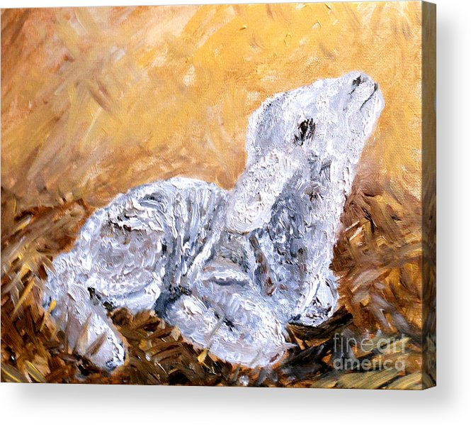 Lamb Acrylic Print featuring the painting Lamb by Amanda Dinan