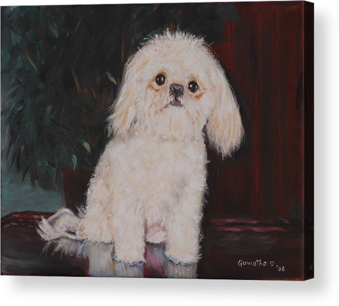 Dog Acrylic Print featuring the painting Lulu by Quwatha Valentine