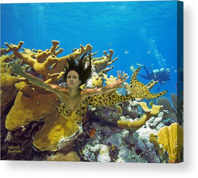 Mermaid Acrylic Print featuring the photograph Mermaid Camoflauge by Paula Porterfield-Izzo