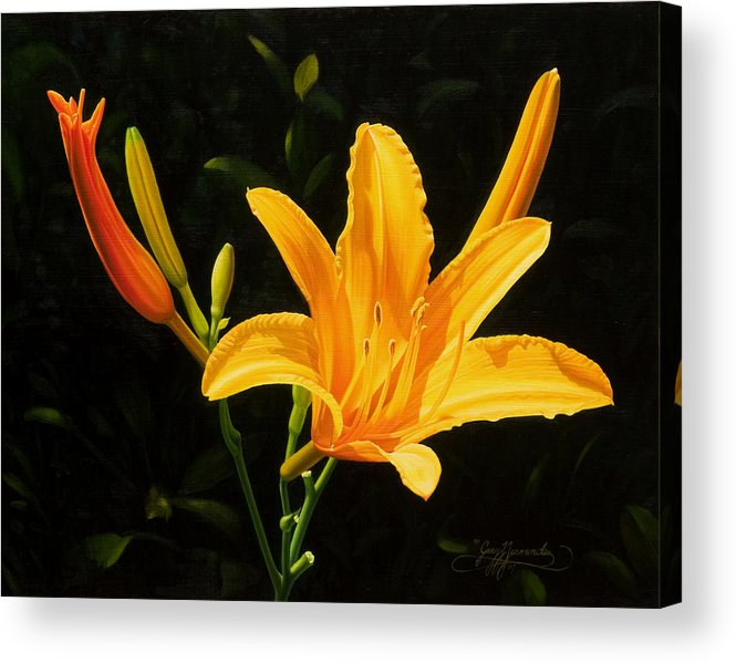 Floral Acrylic Print featuring the painting Monikas Lily by Gary Hernandez