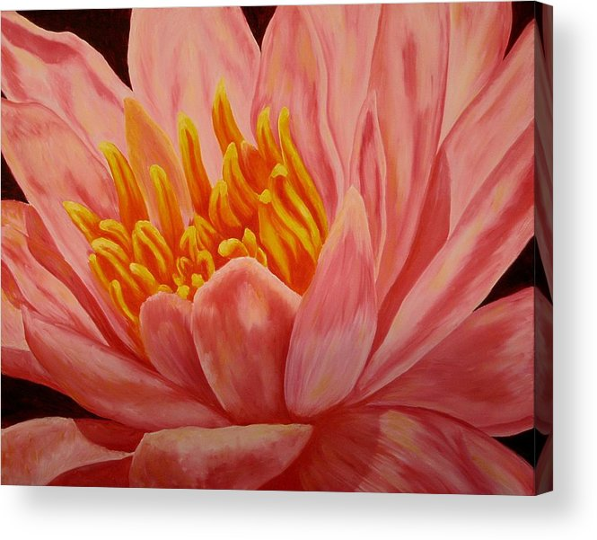Oil Acrylic Print featuring the painting Pink Waterlily by Darla Brock