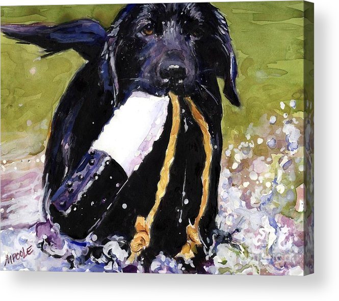 Black Lab Puppy Acrylic Print featuring the painting The Ropes by Molly Poole