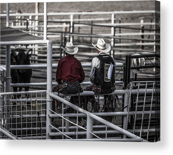 Landscapes Acrylic Print featuring the photograph The Stare-off Begins by Amber Kresge