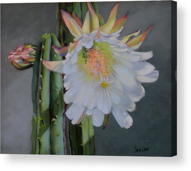 Representational Acrylic Print featuring the painting Cactus Flower by Jean Crow