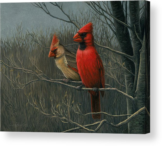 Birds Acrylic Print featuring the painting Cardinals by Lisa Bonforte