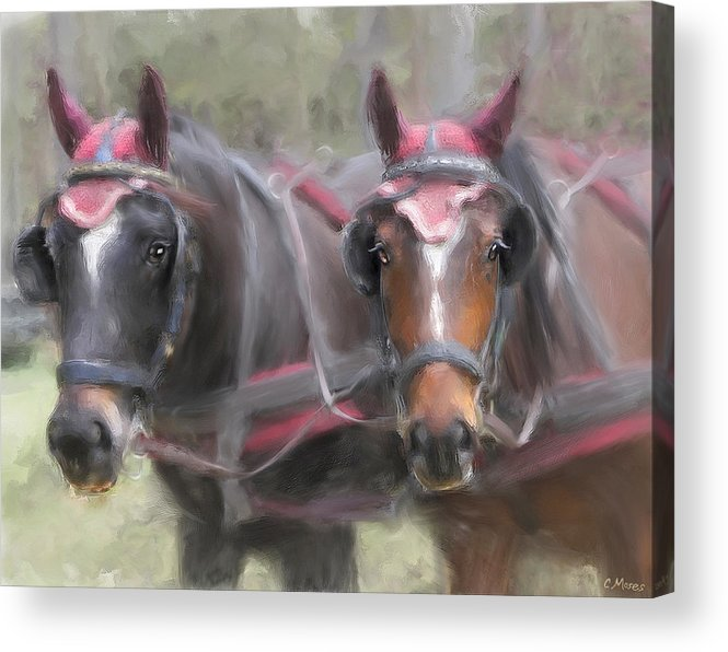 Horse Acrylic Print featuring the painting Carriage Horses Pleasure Pair by Connie Moses