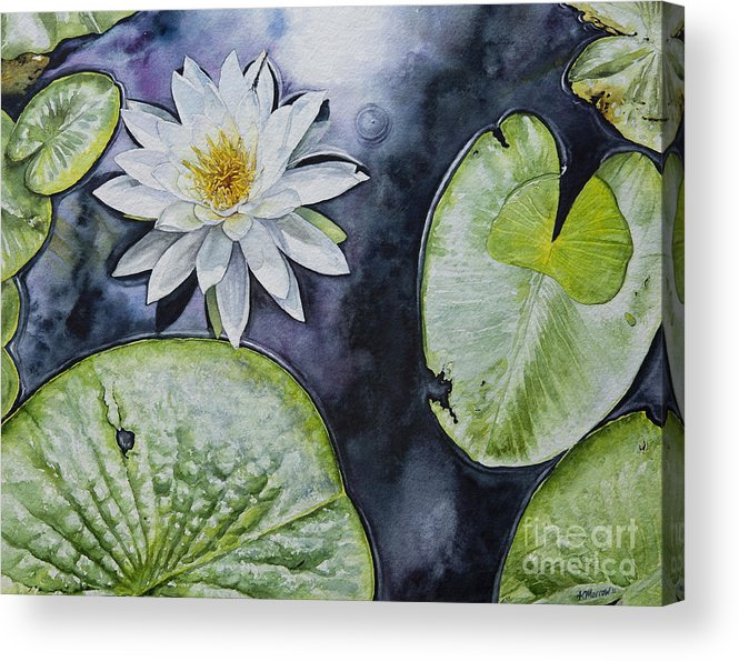 Water Lilly Acrylic Print featuring the painting Clearwater Lilly by Kelly Morrow