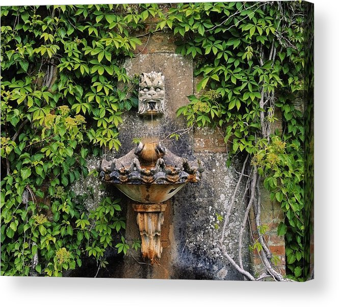 Climbers Acrylic Print featuring the photograph Fountain In The Walled Garden, Florence by The Irish Image Collection