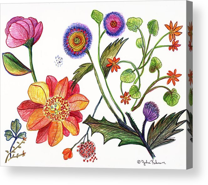 Flowers Nature Botany Drawing Julie Richman Flora Pencil Acrylic Print featuring the painting Botanical Flower-45 Odd Flowers by Julie Richman