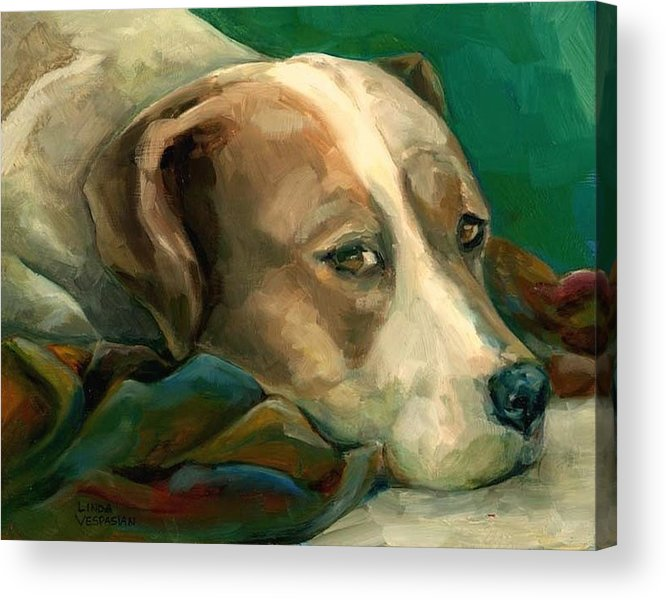 Dog Acrylic Print featuring the painting A Watchful Eye by Linda Vespasian