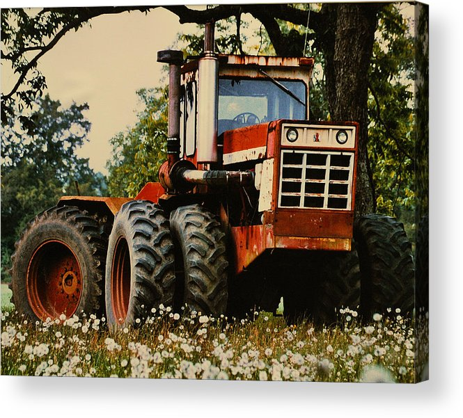 Farm Acrylic Print featuring the photograph Before The Harvest by Lori Mellen-Pagliaro